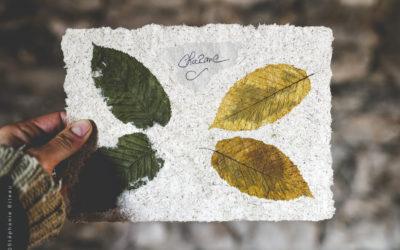 Un art et du papier plein de charme